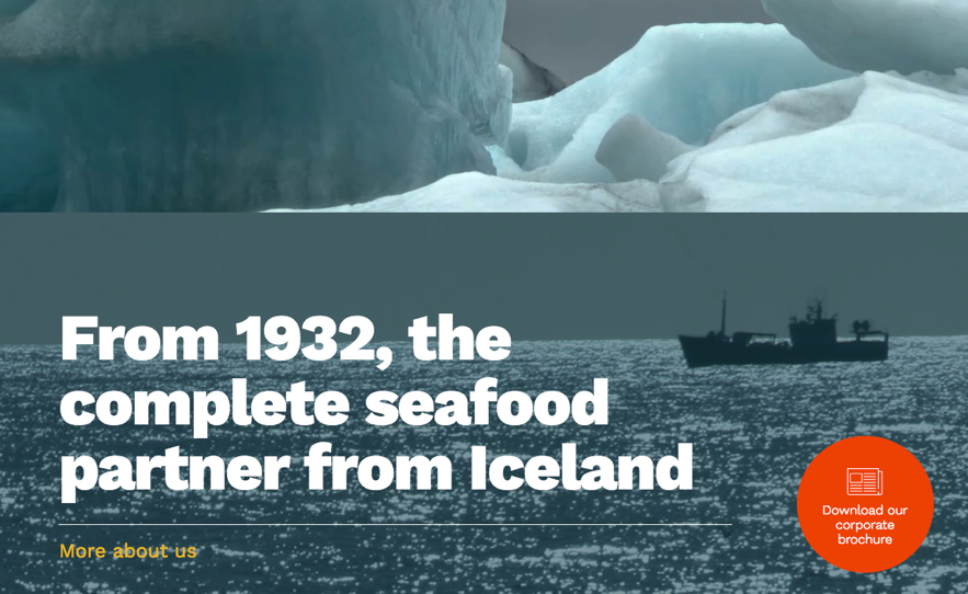 iceland seafood partner